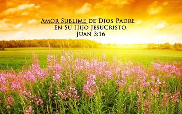 Amor Sublime (Predicas)