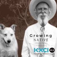 Growing Native podcast