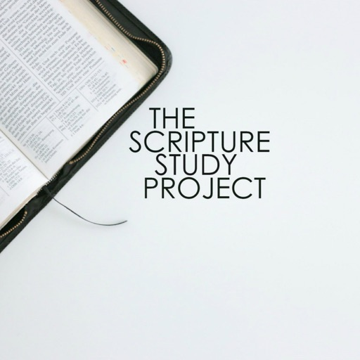 Cover image of The Scripture Study Project