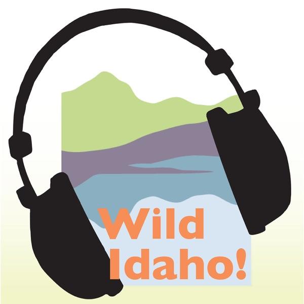 Wild Idaho! Podcast
