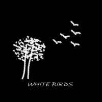 White birds review podcast