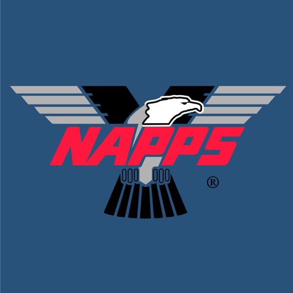 National Association of Professional Process Servers