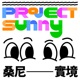 Project Sunny 桑尼實境