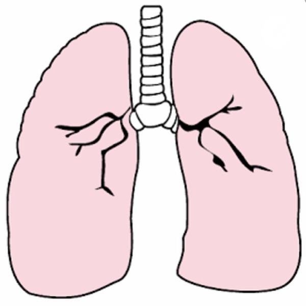 Descomplicando a Fisioterapia Respiratória