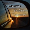 Melodic Expressions artwork