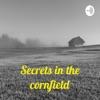 Secrets in the cornfield: Iowa's Unsolved  artwork