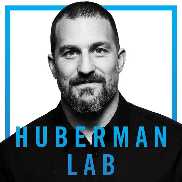 Huberman Lab banner image