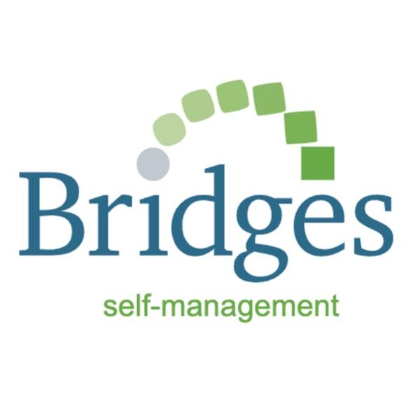 BridgesCast