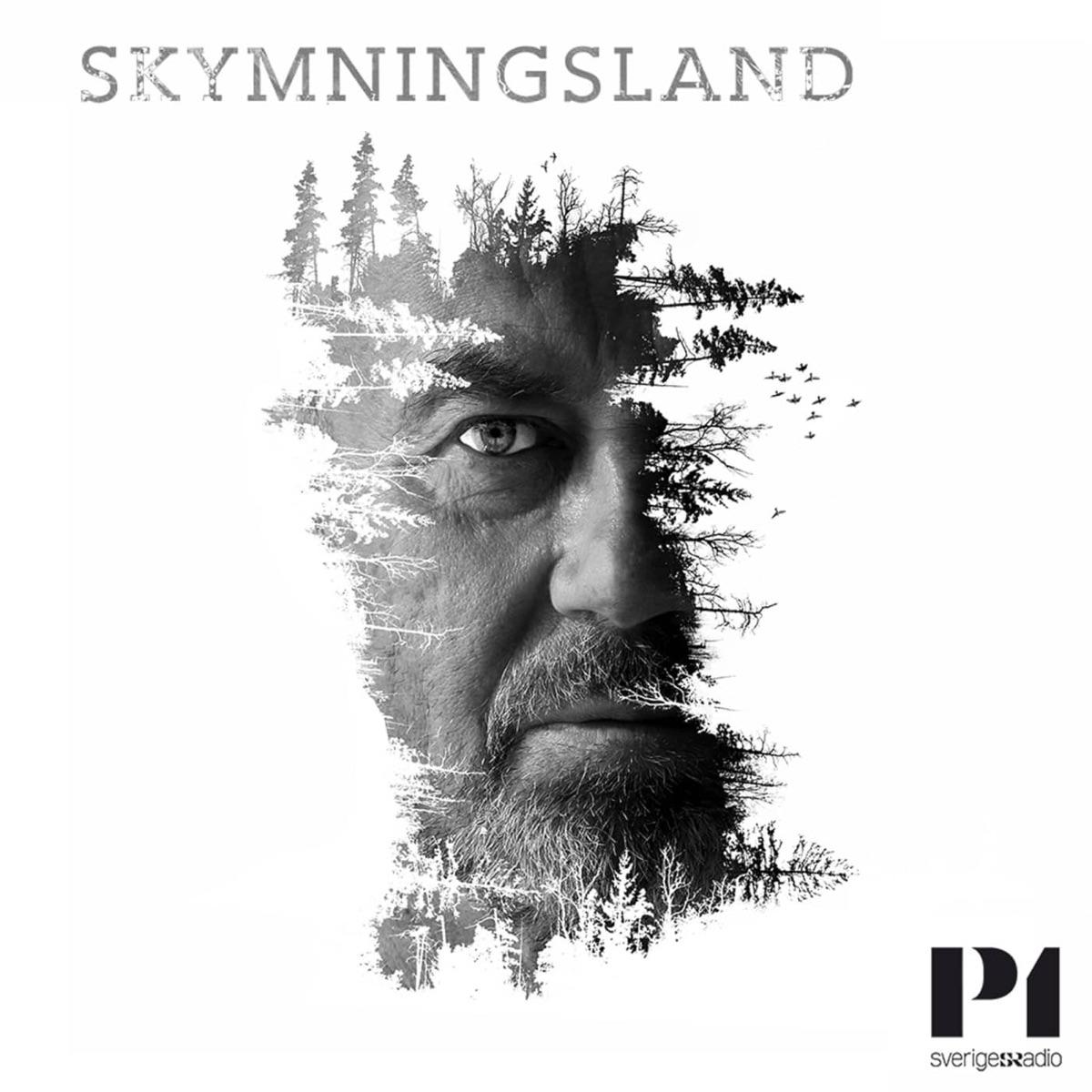 Skymningsland