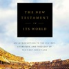 Delving Into The New Testament In Its World artwork