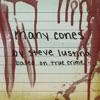 Many Cones, Based On True Crime artwork
