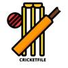 Cricketfile artwork
