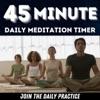 45 Minute Daily Meditation artwork