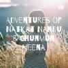 Adventures of Natkat Nandu & Chunmun Meena  artwork