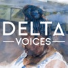 Delta Voices: Artists of the Mid-South artwork