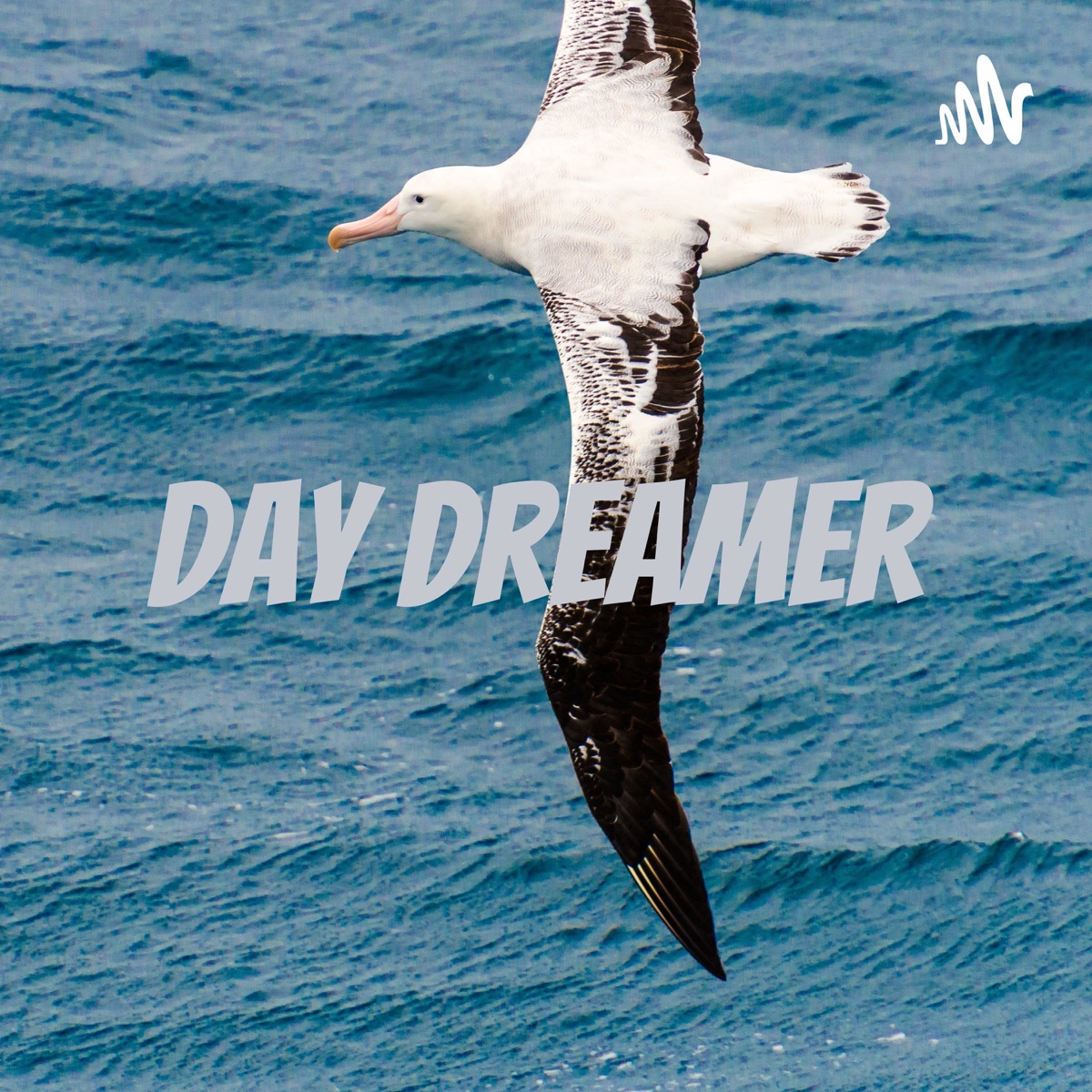 Day Dreamer 🌸