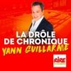 La drôle de chronique - Yann Guillarme