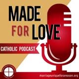 Ep 43: The Catholic Family on Vacation