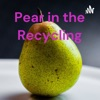 Pear in the Recycling artwork