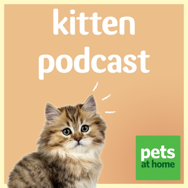 Pets at Home Kitten Podcast Artwork