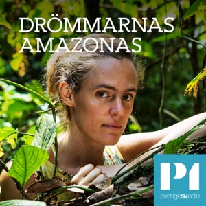 Drömmarnas Amazonas