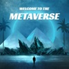 Welcome to the Metaverse artwork