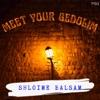 Meet Your Gedolim artwork