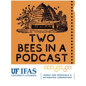 Two Bees in a Podcast