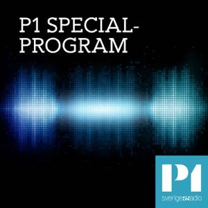 P1 Specialprogram