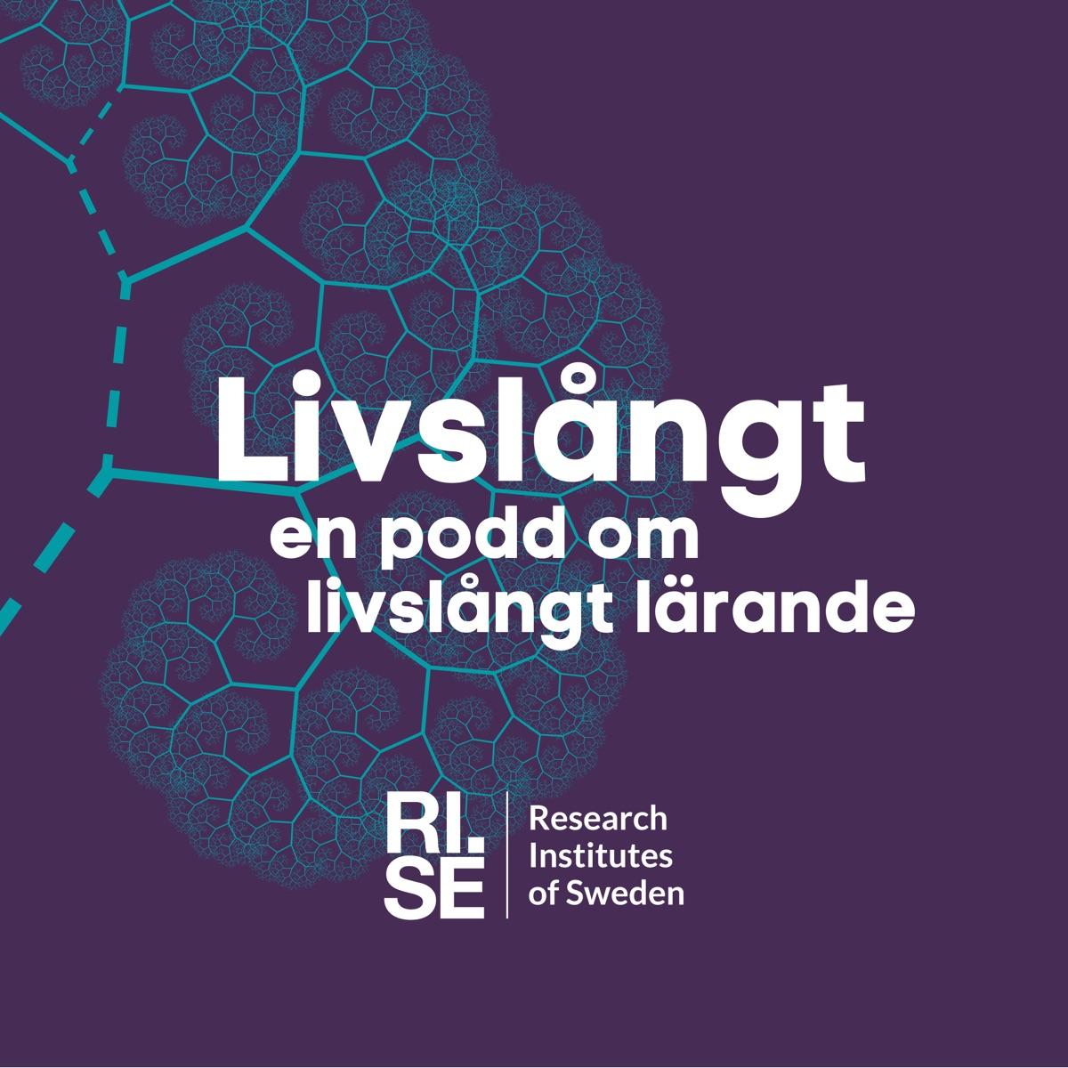 Christian Landgren Lärandet bortom innovationsteatern