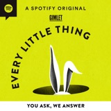 Image of Every Little Thing podcast