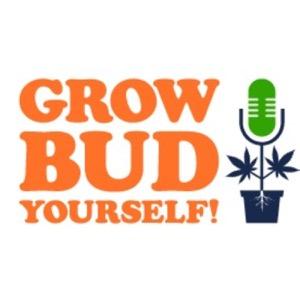 Grow Bud Yourself!