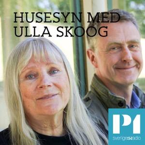 Husesyn med Ulla Skoog