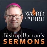 Image of Bishop Robert Barron's Sermons - Catholic Preaching and Homilies podcast