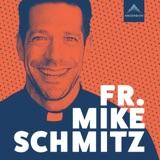 Image of The Fr. Mike Schmitz Catholic Podcast podcast