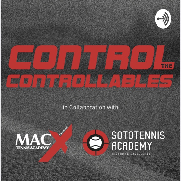 Control the Controllables Artwork