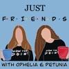 Just Friends  artwork