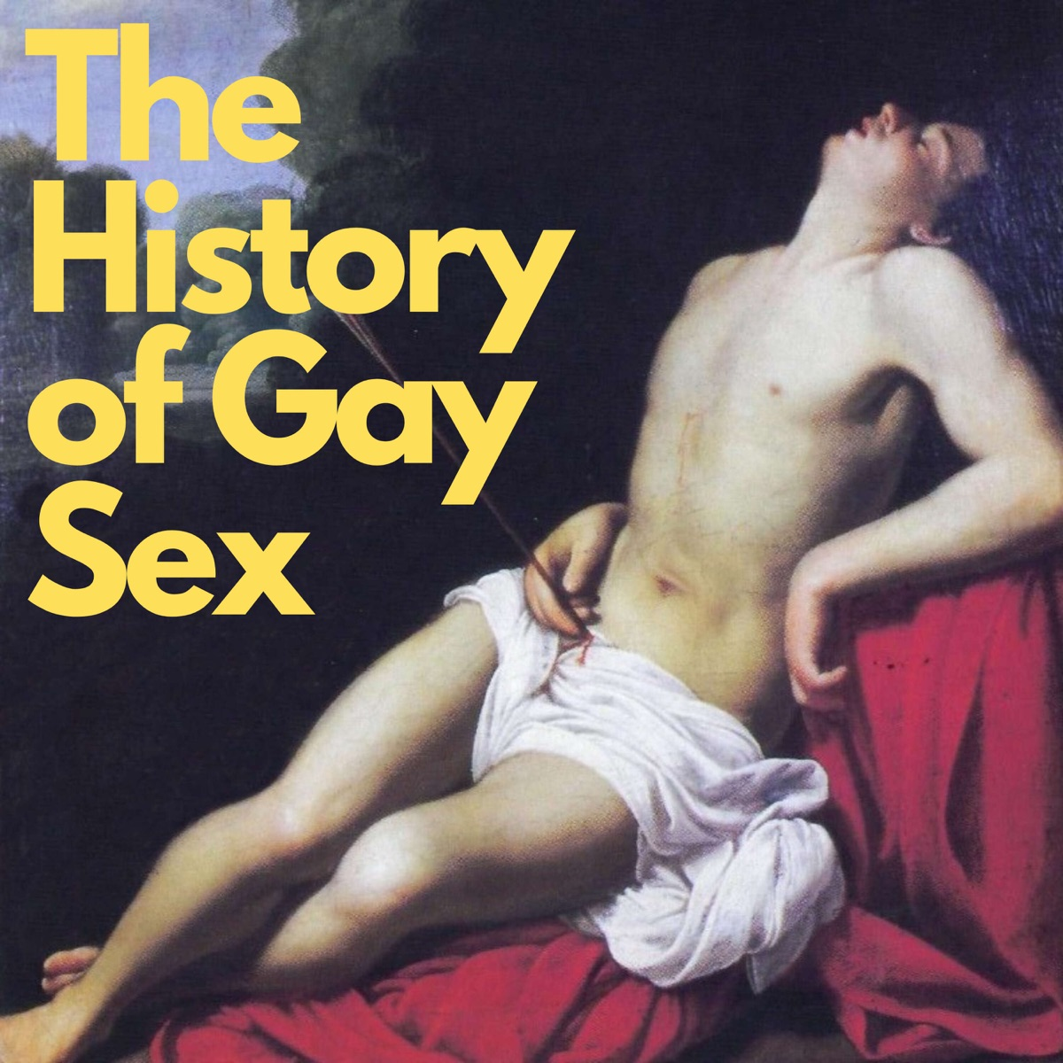 An intro to ay sex