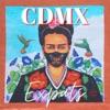 CDMX Expats artwork