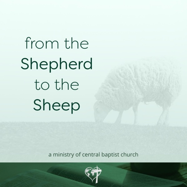 From the Shepherd to the Sheep, Daily Devotionals Artwork