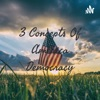 3 Concepts Of America Democracy artwork