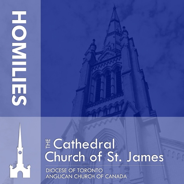 St. James Cathedral Homilies