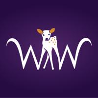 Wellness Wisdom podcast