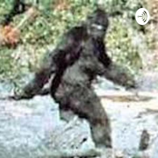 Bigfoot: Real or Imagined?