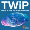This Week in Parasitism artwork