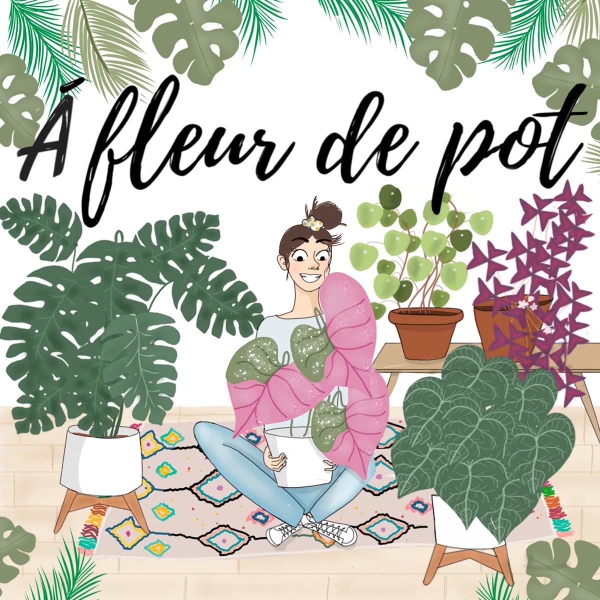 À fleur de pot
