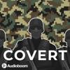 Covert artwork
