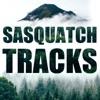 Sasquatch Tracks artwork
