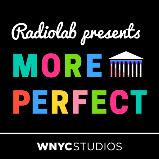Cover image of Radiolab Presents: More Perfect