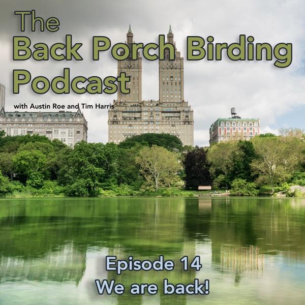 Back Porch Birding Podcast